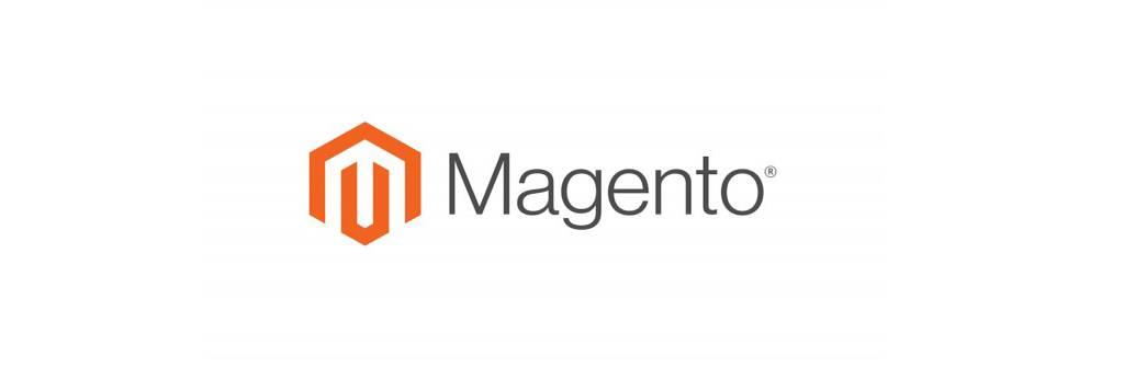 Magento Merchant for Ecommerce Websites